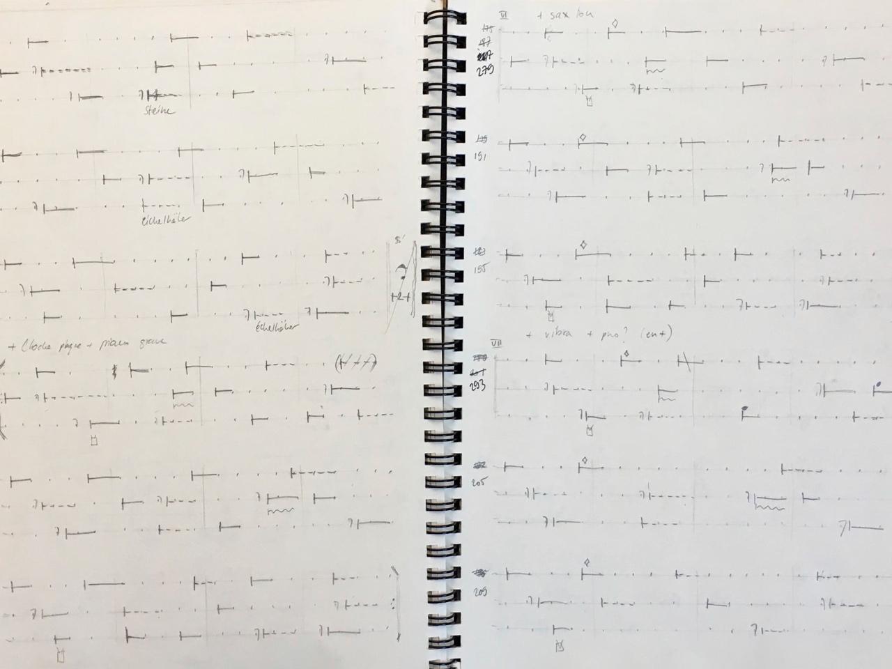 Polygraphie du cavalier